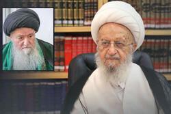 آیت الله حسینی شاهرودی با تمام وجود از مکتب اهل بیت(ع) دفاع کرد