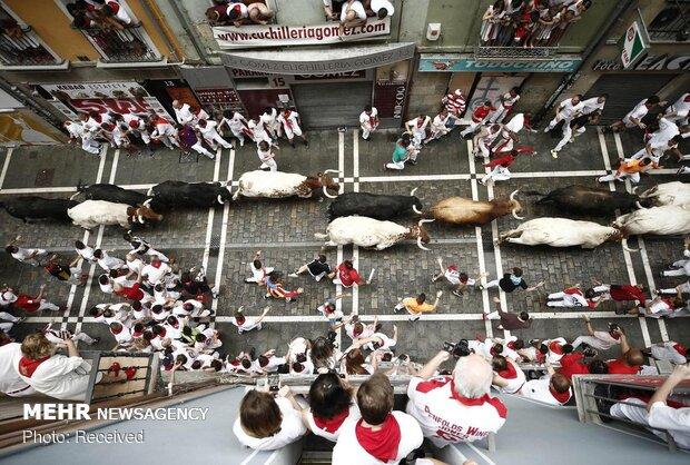جشنواره سان فرمین در اسپانیا