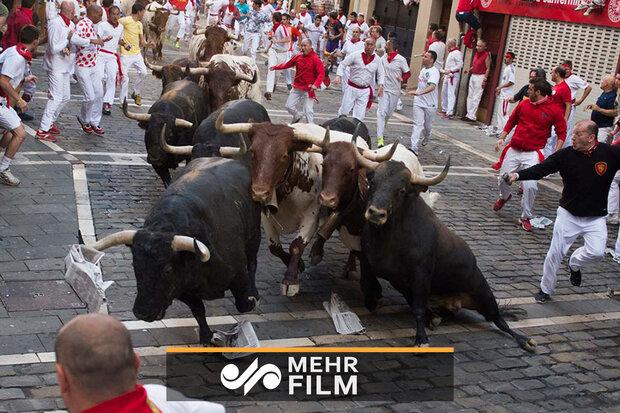 VIDEO: Five injured during San Fermin festival in Spain