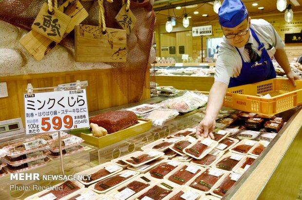 شکار نهنگ در ژاپن