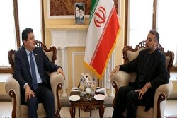 Syrian amb. says Iran-Syria coop. necessary to fight US economic war