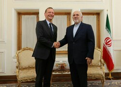 Zarif and French president's top advisor consult on Iran-France developments
