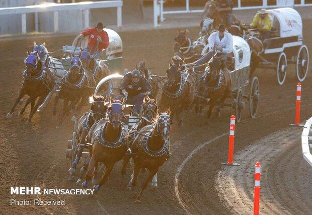 مسابقات استمپید در کانادا