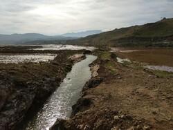 قتل یک تالاب در سکوت محیط زیست/۳۰ هزار مترمکعب خاکریزی در یک روز
