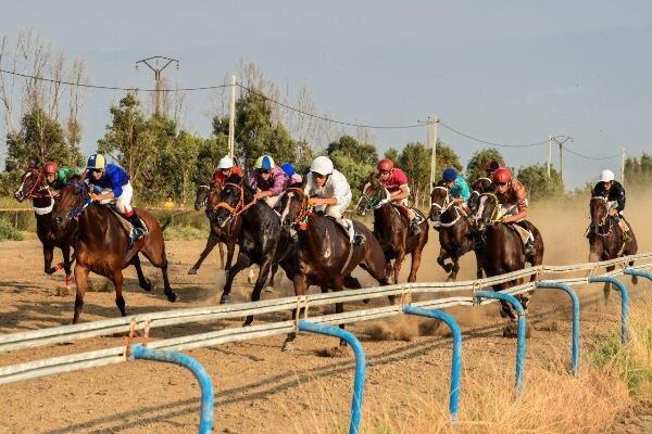 هفته چهارم کورس اسبدوانی تابستانه بندرترکمن برگزار شد