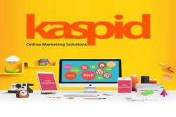 اهمیت طراحی سایت حرفه ای در توسعه کسب وکارشرکتهای ایرانی باکاسپید