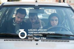 «کلاس رانندگی» از جشنواره «زردآلوی طلایی» جایزه گرفت
