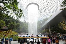 اقدام جالب و خلاق فرودگاهی در سنگاپور برای کاهش مصرف برق