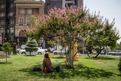 کیفیت قابل قبول هوای پایتخت/دمای ۳۰ درجهای تهران