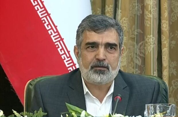 Reducing commitments intended to give diplomacy a chance, Iranian nuclear spokesman says