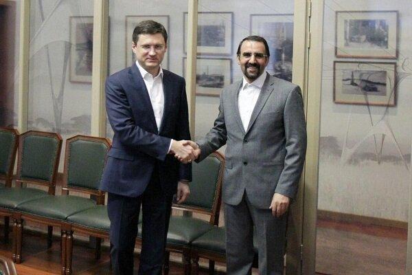 Iran now Russia's strategic partner: Novak