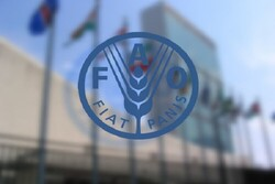 FAO reaffirms readiness to assist Iran in sustainable soil management