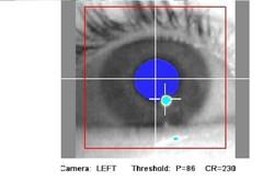 شناسایی هویت افراد از روی حرکات درون چشم