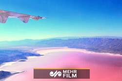 VIDEO: Flamingos fly over Pink Lake in southern Iran