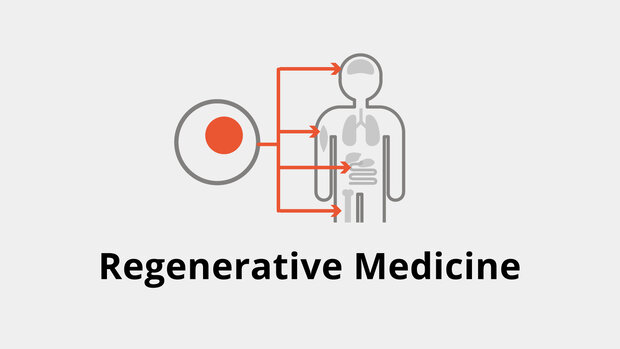 Iranian company manufactures 37 regenerative medicine products