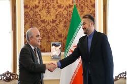 Amir-Abdollahian held talks with Russian amb.