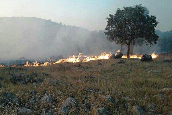 آتش سوزی ارتفاعات سرعلی آباد اطفاء شد