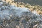 جنگلهای «تنگ ملاوی» پلدختر دچار آتش سوزی شد