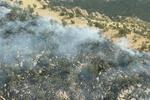 آتشسوزی جنگلهای پلدختر مهار شد