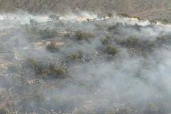 آتش در جنگل های کوهمره سرخی کمتر شد/ استفاده از ۴ بالگرد هوانیروز