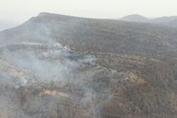 ۸۰ هکتار از عرصههای طبیعی ارتفاعات «وزکور» طعمه حریق شده است