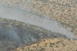 آتش سوزی جنگل های شهرستان کهگیلویه مهار شد/مصدومیت یک نیرو