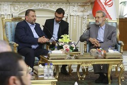 Resistance, only way to make enemies feel regret: Larijani