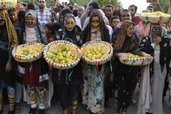 مهرجان المانجا والياسمين في ميناب جنوب إيران /صور