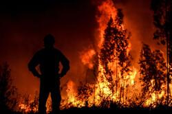شعلههای حریق در منطقه حفاظت شده چهل پا مهار شد