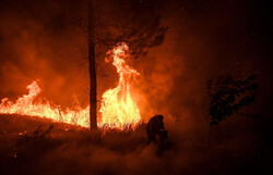 آتش سوزی ۱۰ هکتار از اراضی ملی «شاه چشمه» فیروزکوه/حریق مهار شد