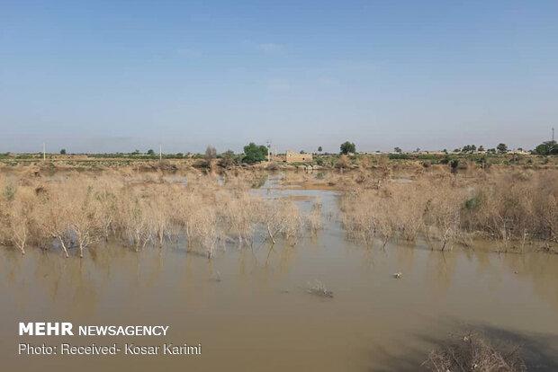 وضعیت حمیدیه سفلی چهار ماه پس از سیلاب
