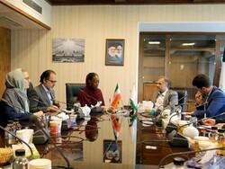 UN to pursue case of US medicine, food sanctions against Iran: envoy