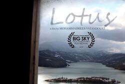 «لوتوس» در کانادا روی پرده رفت
