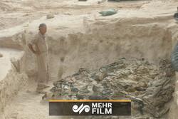 عراق کے المثنی علاقہ میں اجتماعی قبریں دریافت