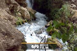 خطر هپاتیت و مشکلات آب و فاضلاب در لردگان