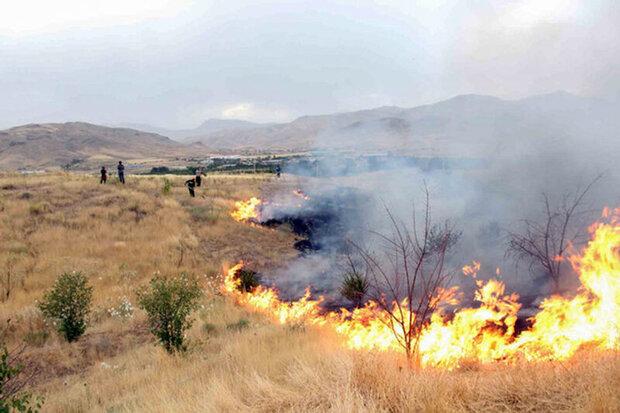 آتش سوزی منطقه «بان کلوالی» چوار ایلام خاموش شد