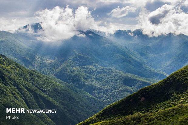 گردشگران گمشده در جنگل ابر از مرگ حتمی نجات یافتند