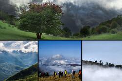 چشمان بارانی «جنگل ابر»/ ثبت جهانی جنگل هیرکانی را نجات میدهد؟