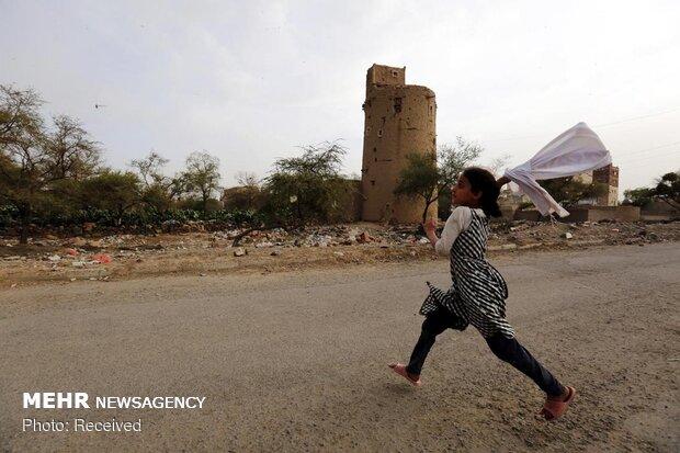 Yemen'in başkenti Sana'yı çekirgeler bastı!