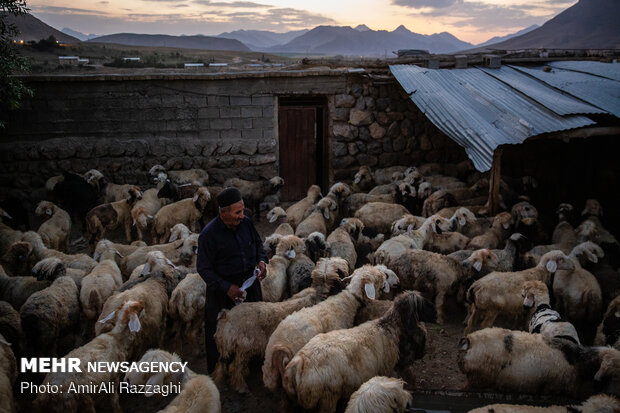 ماندن در روستا زیر چتر اقتصاد مقاومتی