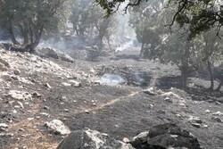 مهار آتش سوزی مراتع منطقه پراشکفت کهگیلویه و بویراحمد