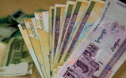 Bill on national currency reconversion submitted to Parliament