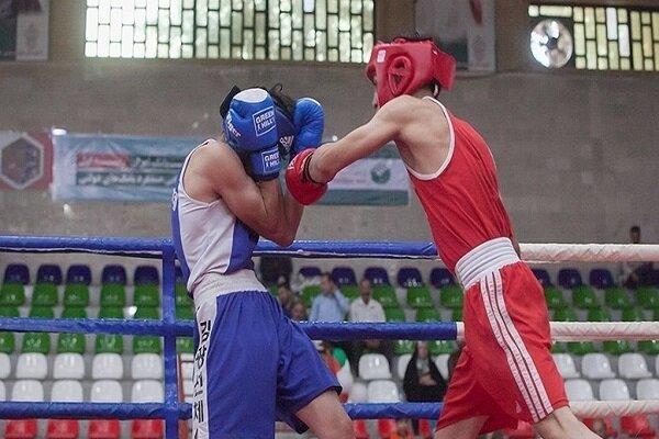 درخشش ورزشکاران چهارمحالی در مسابقات کشوری بوکس