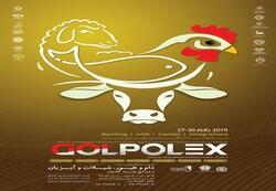 GOLPOLEX