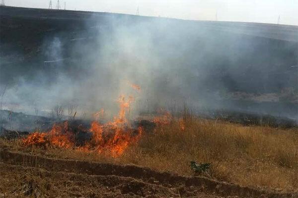مراتع «چل جایدر» پلدختر در آتش سوخت