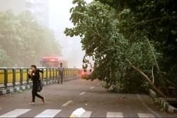 وزش باد شدید پدیده غالب هوای آذربایجان غربی است