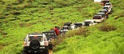 4WD car rally called off in support of UNESCO-tagged forest