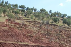 خطر وقوع زمین لغزش در ۲ شهرستان لرستان/ ۱۲۸ هزار هکتار عملیات آبخیزداری انجام شد