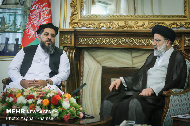 دیدار رئیس مجلس سنای افغانستان با حجت الاسلام رئیسی