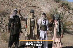 عوامل معدوم گروهک تروریستی جندالفاروق چه کرده بودند؟